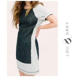 Lou & Grey Color Block Knit Shift Dress Sz Small